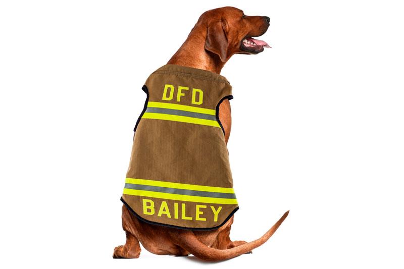 GCS reflective dog vest